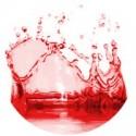 Raudonos spalvos dažai 10ml