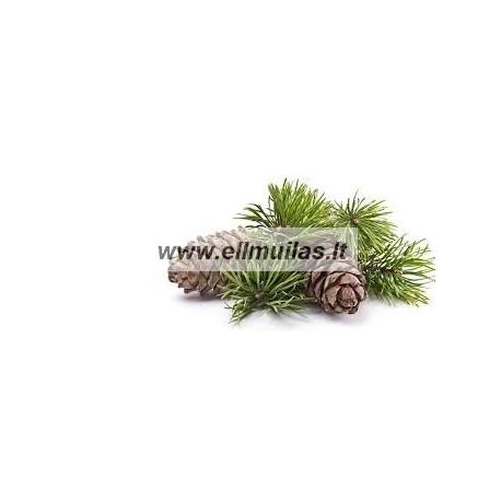 Pušų eterinis aliejus (Pinus sylvestris) 5/10ml