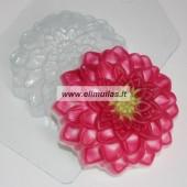 Muilo forma ''Gėlė 1''