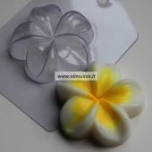 Muilo forma ''Gėlė pliumerija''