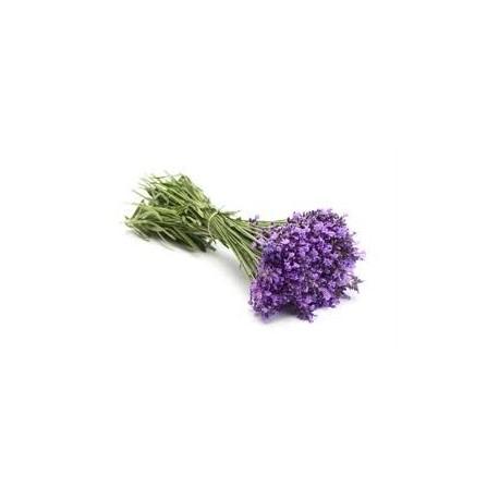 Levandų eterinis aliejus (Lavandula angustifolia) 5/10ml