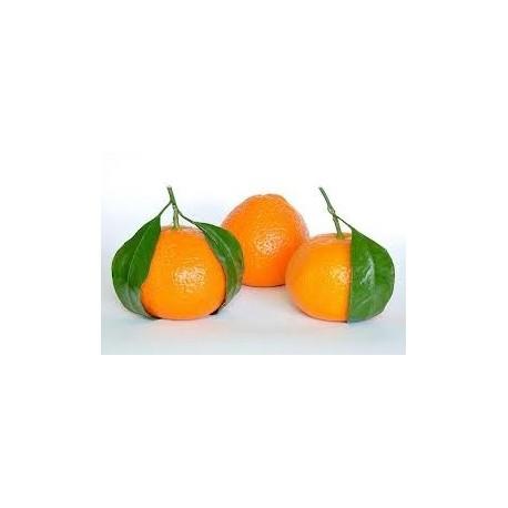 Mandarinų eterinis aliejus (Citrus reticulata) 5/10ml