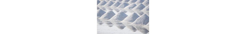 Druskos, negyvosios jūros purvas