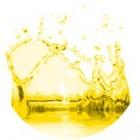 Geltonos spalvos dažai 10ml
