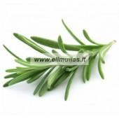 Rozmarinų eterinis aliejus (Rosmarinus Officinalis) 5/10ml