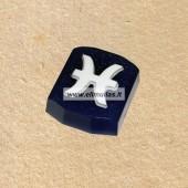 Muilo forma ''Zodiako ženklas - zuvis''