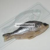 Muilo forma '' Žuvytė - kuoja''