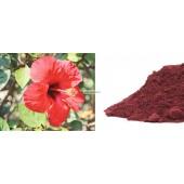 Kinrožės (hibicus) pudra 10g