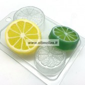 Muilo forma '' MIni citrusai''