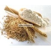 Hidrolizuoti kviečių baltymai 25g