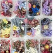 Džiovintų gėlių rinkinys